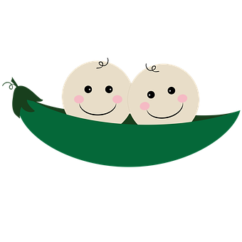 Twins, Two Peas In A Pod, Pea, Pod, Pea Pod, Baby