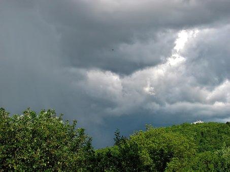 Trees, Cloudy, Sky, Day, Dark, Clouds, Greenery
