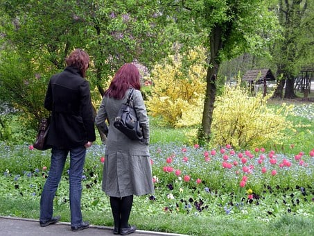 Park, Herastrau, Nature, Flowers, Peisaj, Bucuresti
