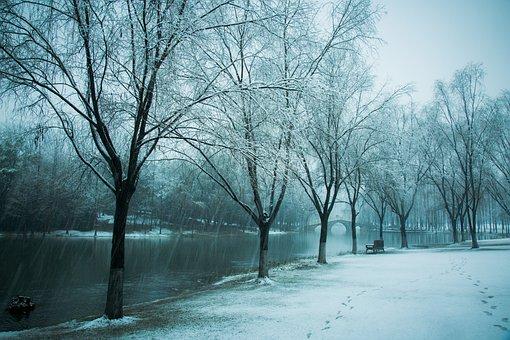 Hiromasa Lake, Zhejiang University, Snow, Winter