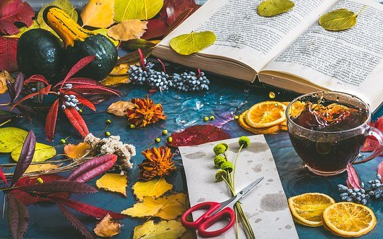 Autumn Mood, Autumn, Tea, Book, Leaves, Color, Foliage