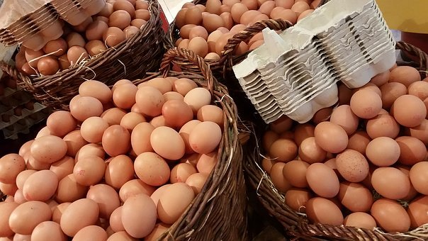 Egg, Easter, Sales Stand, Holland, Egg Carton, Protein