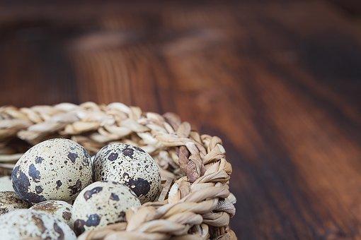 Basket, Egg, Quail Eggs, Natural Product, Small Eggs