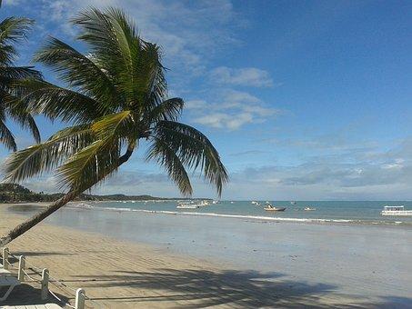 Alagoas, Maragogi, Brazil, Northeast, Huh, Sol, Beach