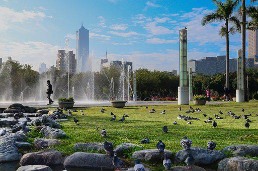 Kaohsiung, Central Park, Pigeon, Fountain, Rock, Green