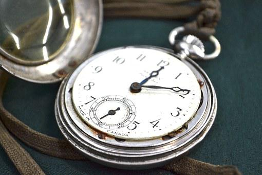 Watch, Time, Pocketwatch, White Rabbit, Clock, Alarm