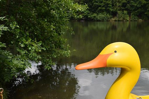 Duck, Pond, Pedal Boat, Water, Yellow, Original, Funny