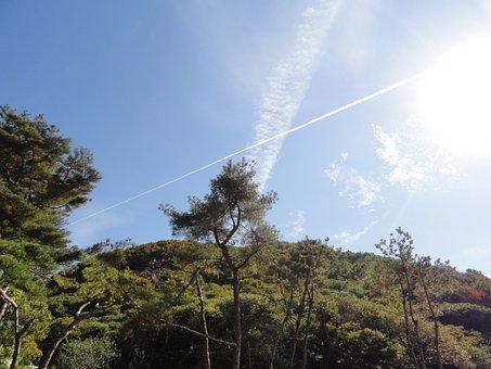 For An Empty Mountain, Gyeonggi Do, Hike