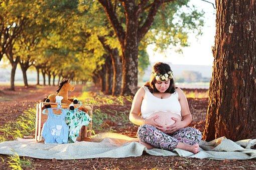 Pregnant Woman, Mother, Essay, Pregnant Book, Pregnant
