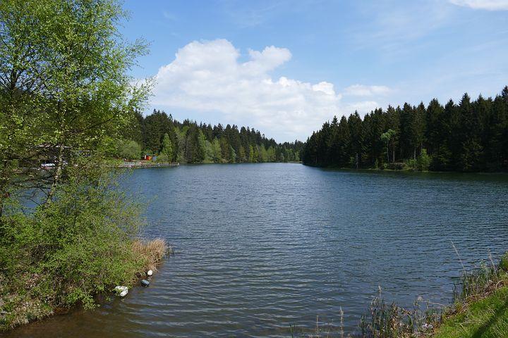 Grumbach Pond, Hahnenklee, Pond, Lake, Water, Forest