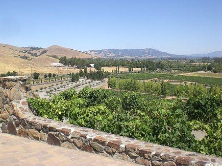 Winery, Sonoma, California