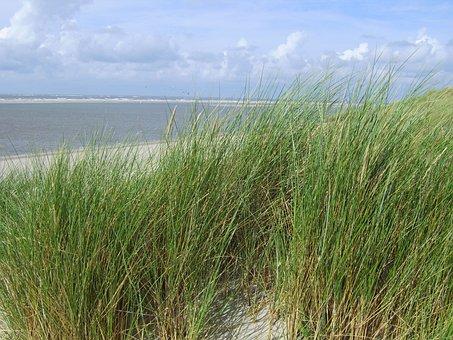 Sand Beach, Sand, Sea, Langeoog, North Sea, Beach Chair