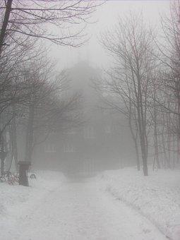 Fog, Mysterious, Kahler Asten, Hochsauerland