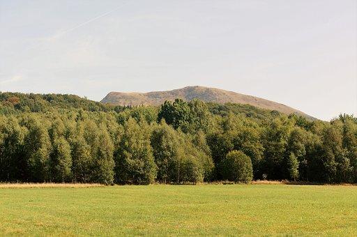 Bieszczady, Połonina, Mountains, Landscape, Forest