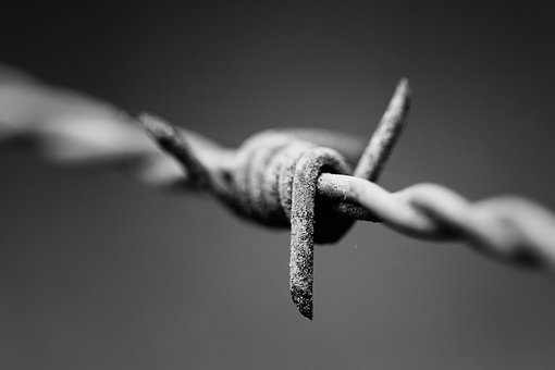 Nails, Barbed, Defence, Black And White