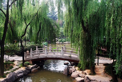 Bridge, Arch, Arched, Chinese, Asian, Garden, Park