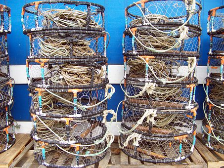Newport, Oregon, Crab, Pots, Harbor, Sea, Fishing