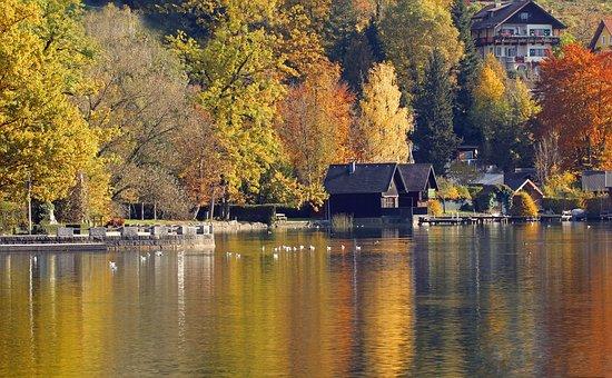 Landscape, Autumn, Colorful, Trees, Nature, Fall Color