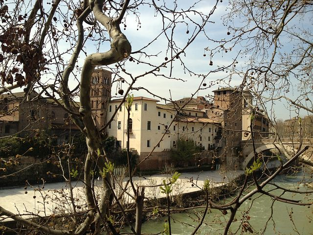 Island, Tiber, Branches, Edge, River, Spring, Rome