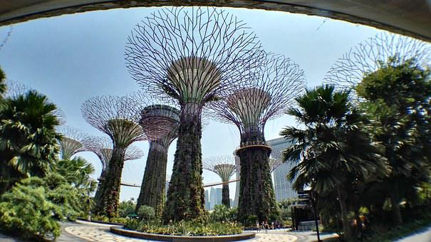Artificial Tree, Singapore, Botanical Garden
