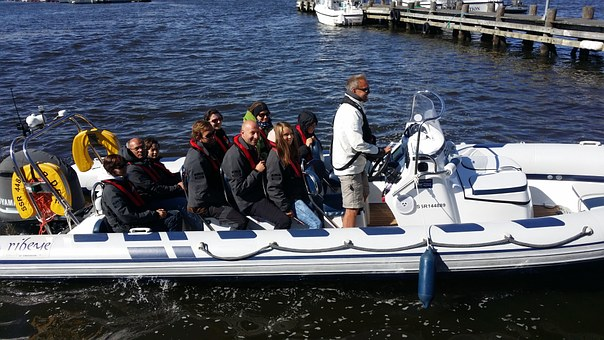 Seal Safari, Fjällbacka, Boat Tour