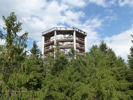 Lipno, Lookout, In The Trees