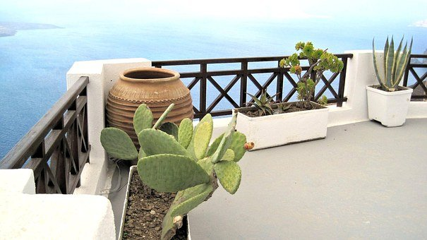 Architecture, Santorini Balcony, Greece, Plants, Travel