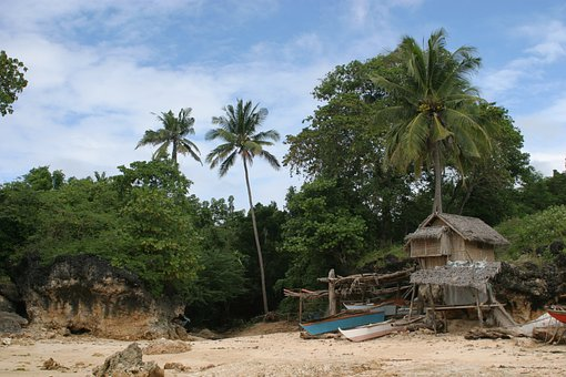Robinson Crusoe, Philippines, Sand Beach, Palm Trees