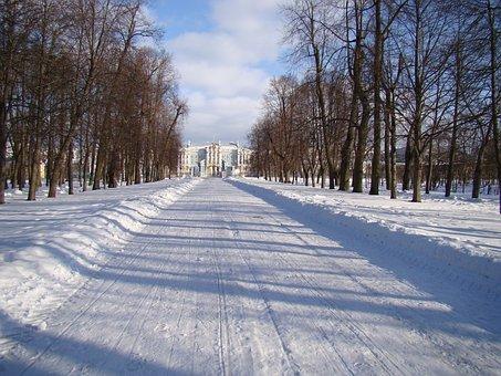 The Palace Ensemble Tsarskoe Selo, Russia, Alley, Trees