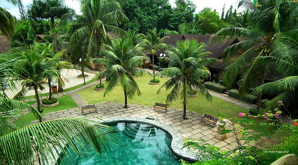 Pool, Resorts, Tropics, Bohol, Paradise, Vacation