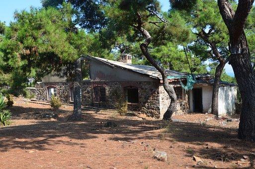 Forest, Home, Tree, Büyükada, Monastery