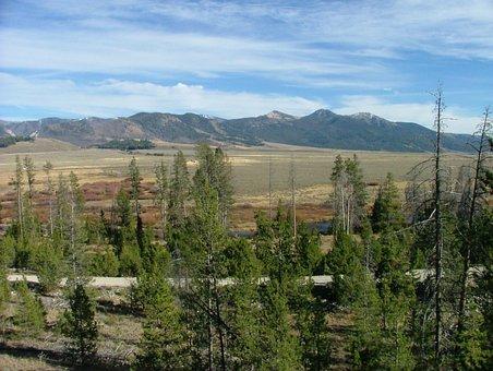 Mountain, Range, View, Scenic, Forest, Idaho, Sawtooth