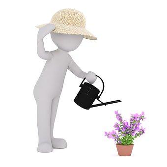 Garden, Gardening, Garden Work, Horticulture, Scrub