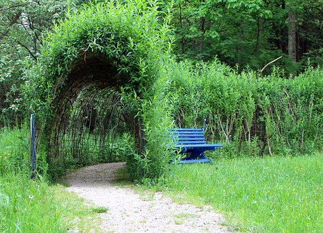 Plant Tunnel, Away, Promenade, Plant, Tunnel, Canopy