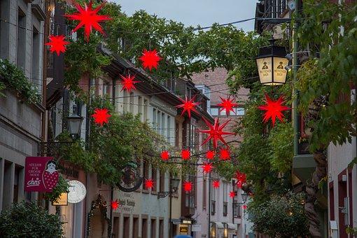 Christmas, Poinsettia, Advent, Freiburg