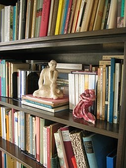 Books, Book, Bound, Library, Bookshelf, Fig, Thinker