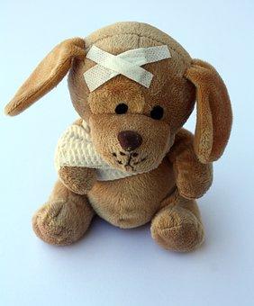 Teddy, Dog, Stuffed Animal, Ill, Injured, Fever, Broken