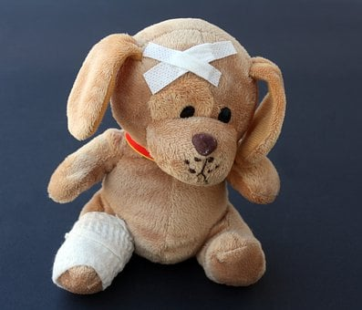 Teddy, Dog, Stuffed Animal, Ill, Injured, Broken, Leg