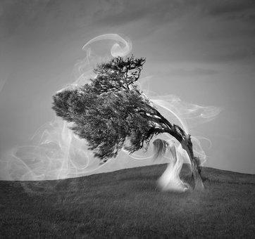 Smoke, Girl, Ground, Three, Sky, Woman, Fiction, Wind