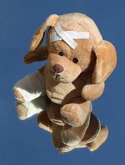 Teddy, Dog, Broken, Leg, Stuffed Animal, Ill, Injured
