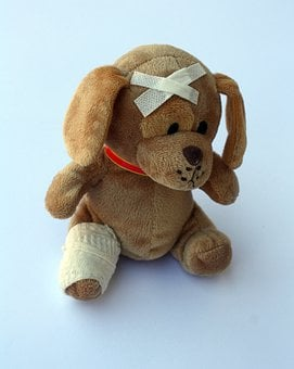 Teddy, Dog, Stuffed Animal, Ill, Injured, Fever, Broken