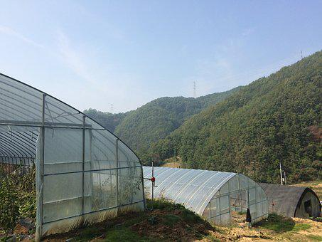 Plastic Greenhouse, Country, Autumn Sky, Tranquility