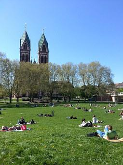 Students, Sun, Lazing Around, Relax, Do Nothing, Park