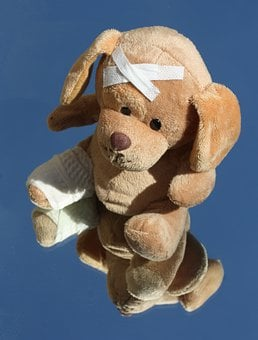 Teddy, Dog, Broken, Leg, Stuffed Animal, Ill, Injured