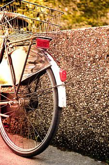 Wheel, Bike, Dutch, Wheels, Cycling, Cycle