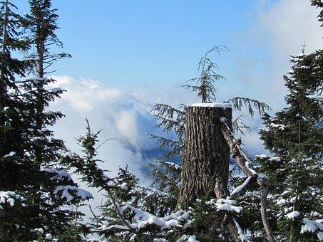 Grouse Mountain, Canada, Vancouver, Snow, Mountain