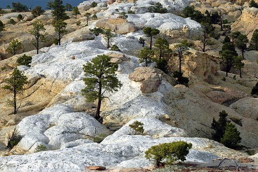 New Mexico, Landscape, Rocks, Rocky, Trees, Nature
