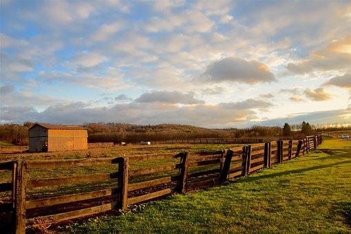 Fence, Wooden, Farm, Sky, Blue, Grass, Green, Light