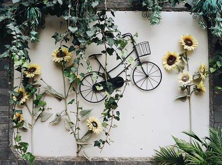 Wall, Bike, Bicycle, Lifestyle, City, Brick, Biking