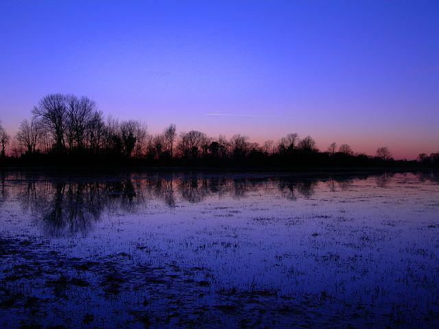 Flooding, Meadow, Winter, Reflections, Dusk, Water